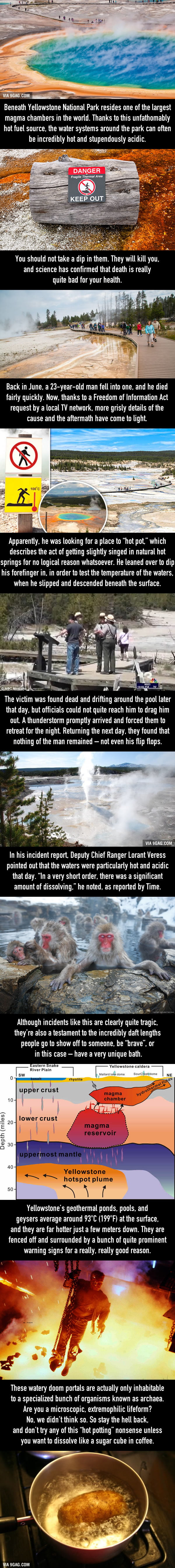 Man Looking For A Hot Soak In Yellowstone Spring, Slipped And Dissolved In Acidic Water