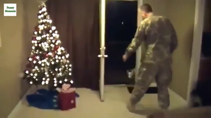 Dog seeing his owner back from deployment