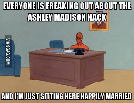 My view of the Ashley Madison hack