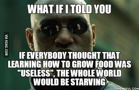"""After I saw this great idea on a post about teaching children in school about how to grow food and people saying how """"useless""""it is"""