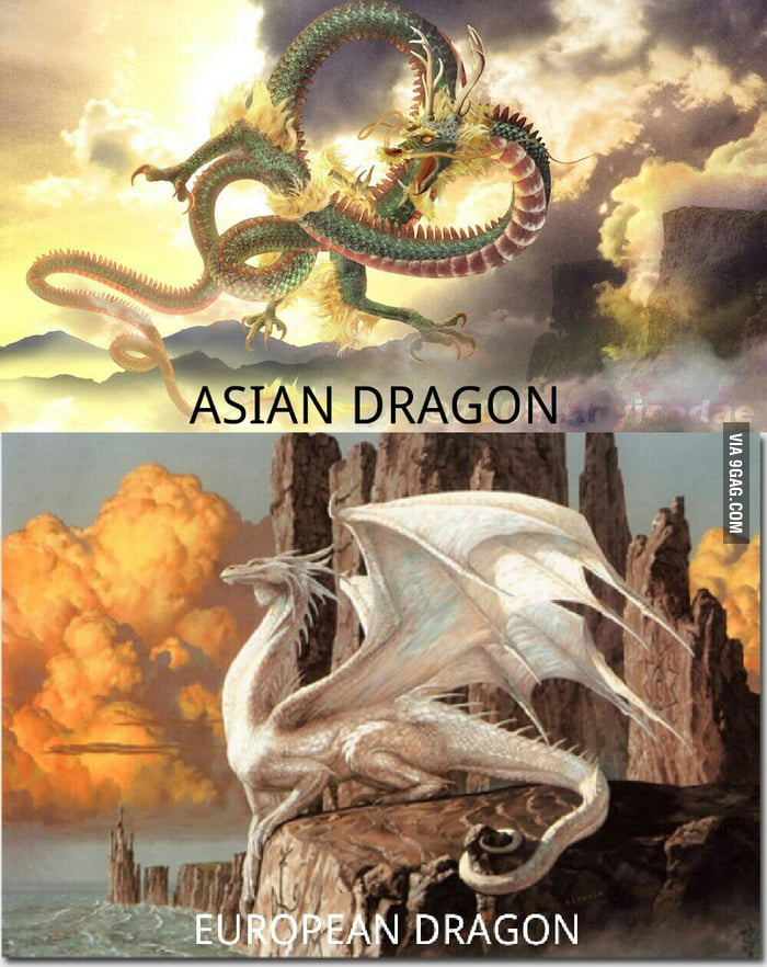 My teacher just taught me this. They're dragons, yet so different..