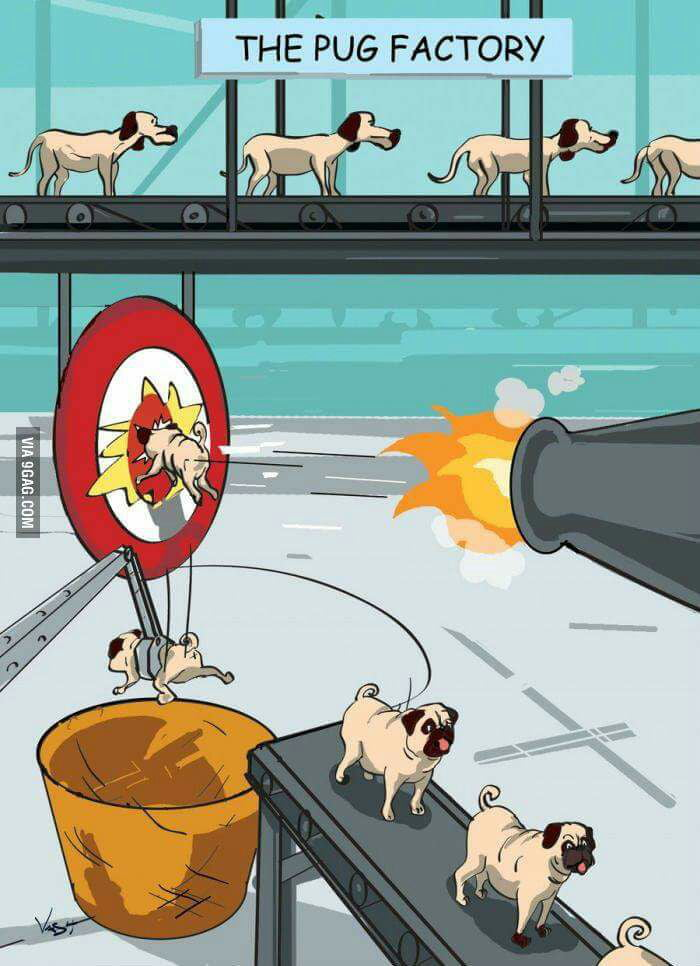 Finally the pug formula is out!
