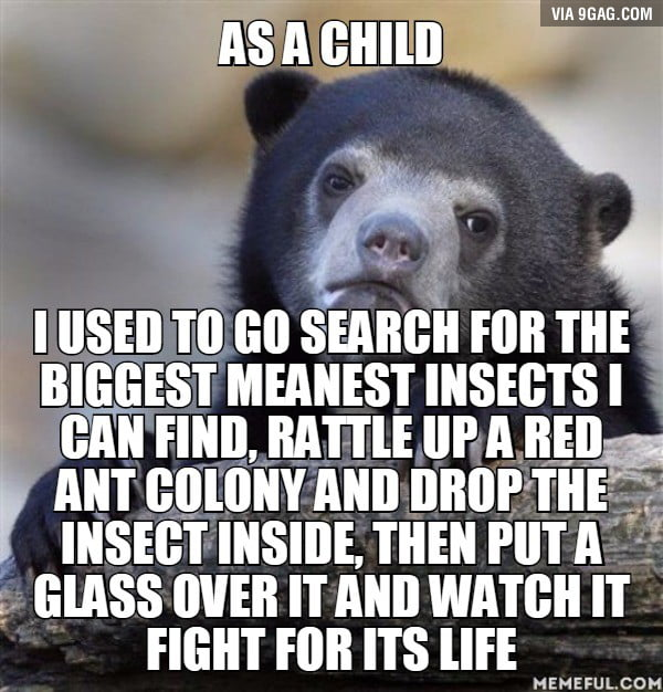 One of them were ripping that ants in half and managed to survive for about 30 min of constant combat, I let that one go.
