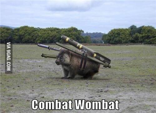 Australian military 2.0