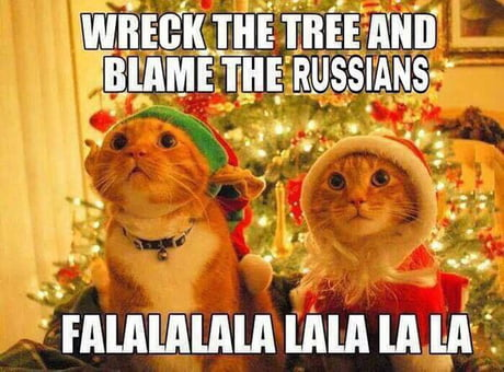 cats blame russians