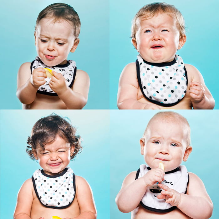 Photographer gets toddlers to suck on lemons then photographs their reactions