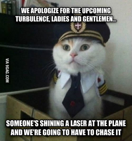 Only the pilot survived, with eight lives to spare