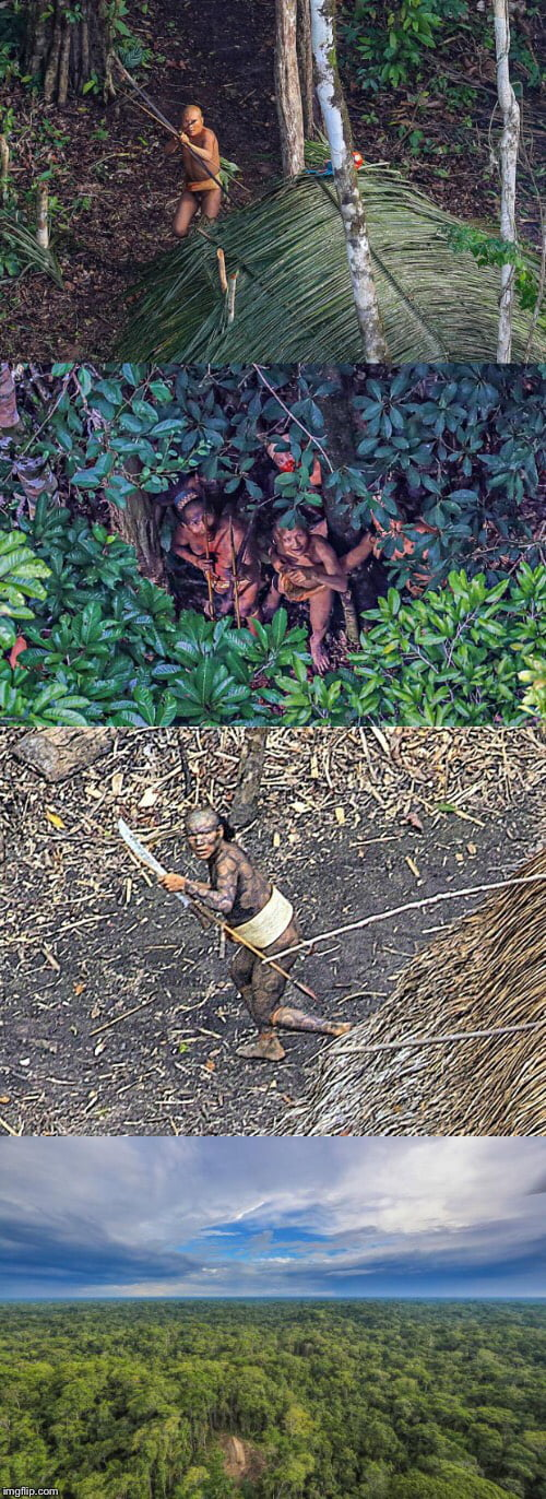 Photographer captures images of uncontacted tribe in Brazil, the tribesmen fired arrows at the helicopter