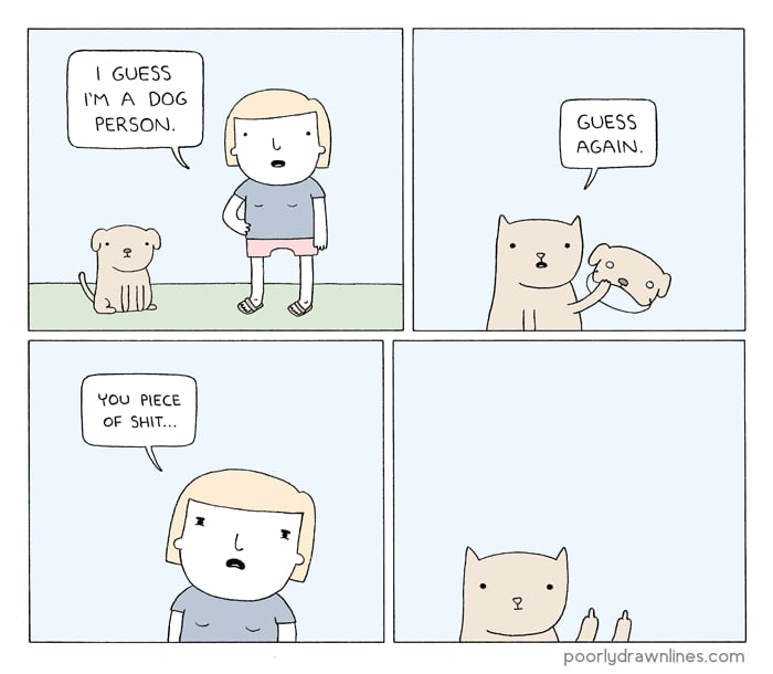 Catlovers here
