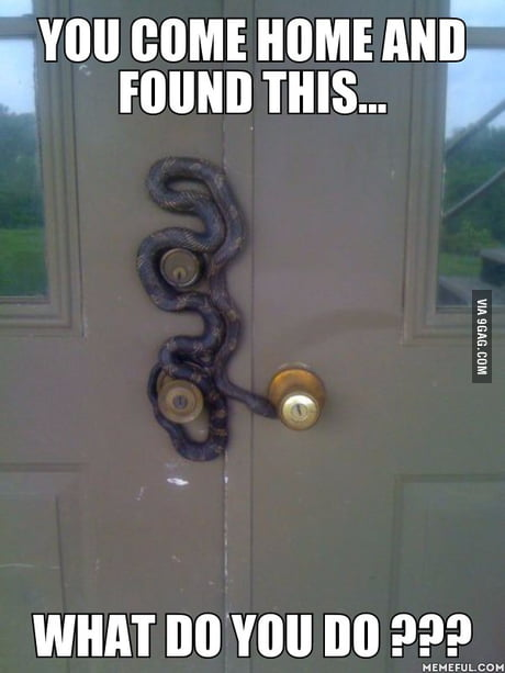 Someone would become a new nope owner