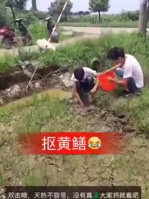 They're just catching mud eels but what they caught is . . .