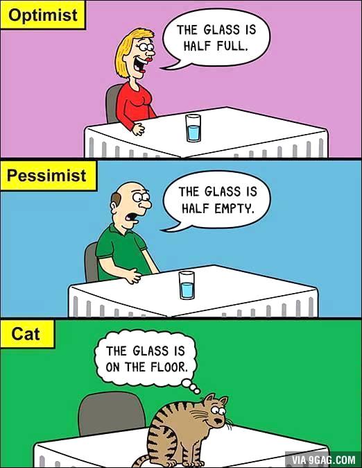 Optimist, pessimist and the...