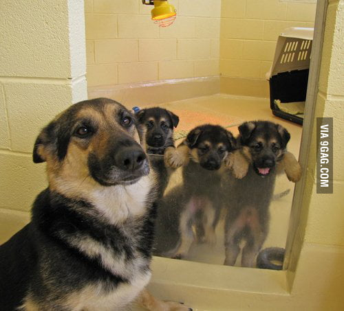 A proud mother.