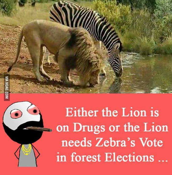 Elections or drugs........ Or both.