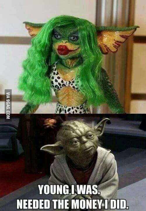 Judge Yoda you must not