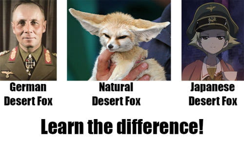What dose the Fox say?