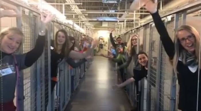 This Animal Shelter Is Celebrating The Fact That Their Kennels Are Empty. Faith in humanity restored