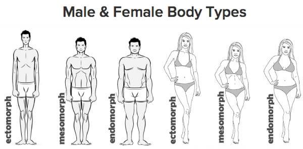 This explains why I'm so skinny. I m an ectomorph