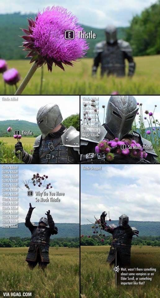 Kontere quand il cherche ses fleurs ;) AxGod5n_700b