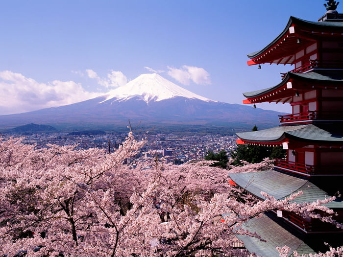 Japan in the Spring; My Dream Visit.