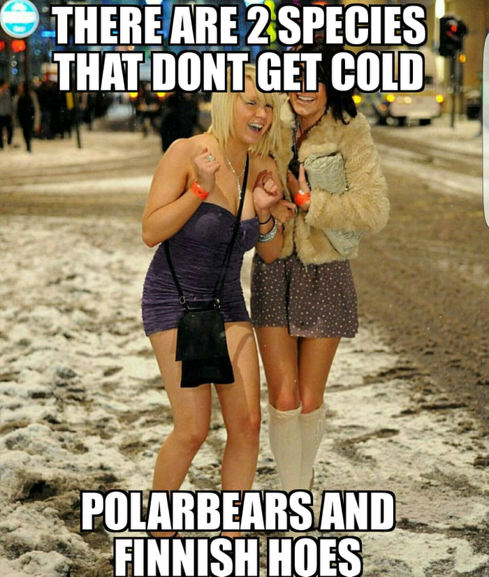 You can see these creatures with miniskirts in -20°C