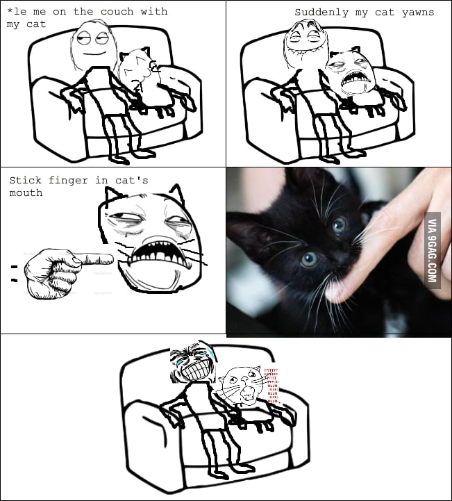 Admit it Cat owners