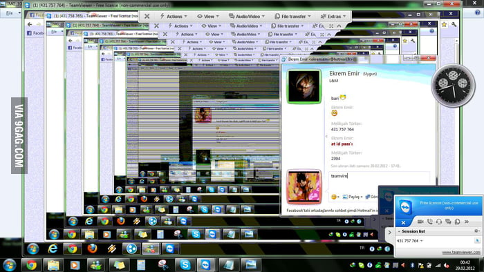 TeamViewer-Ception