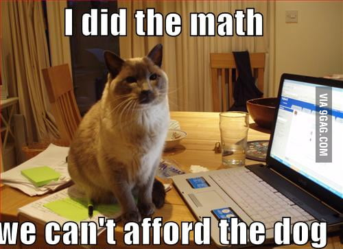 Mathematical Cat