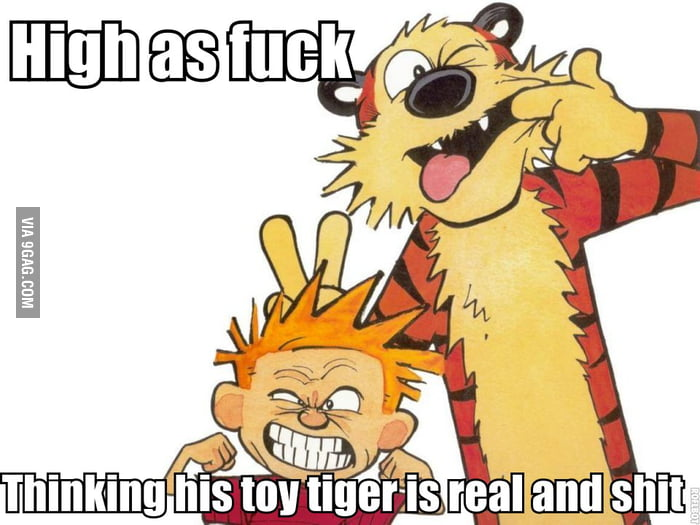 The truth about 6y old Calvin