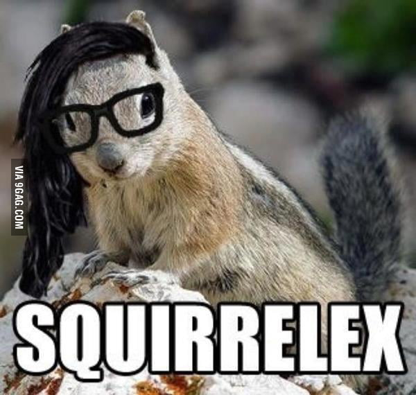 Squirrelex!!!