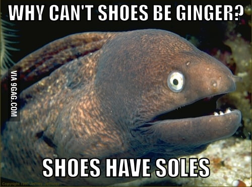 Bad Joke Eel strikes again..