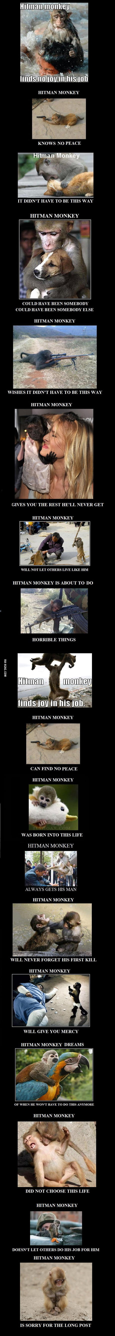Hitman Monkey Finds No Joy In This Post 9gag