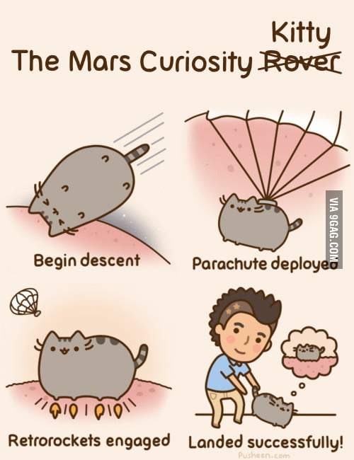 The Mars Curiosity Kitty