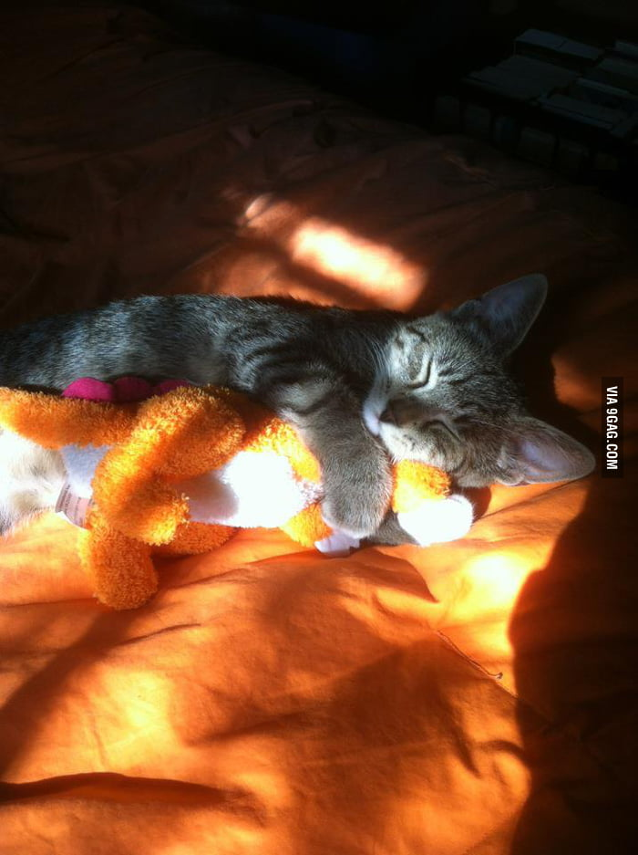 He loves his doll.
