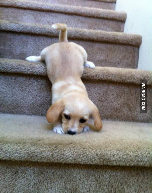 Learning the stairs