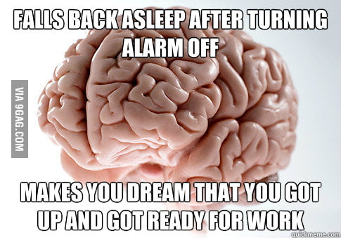 I hate you, Brain!