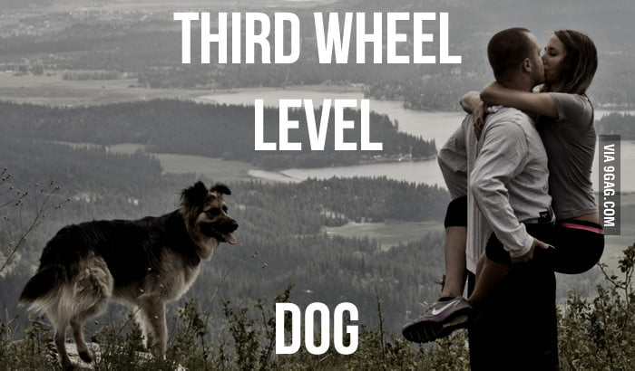 Third Wheel Level: Dog
