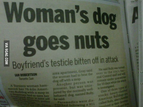 Woman's dog goes nuts...