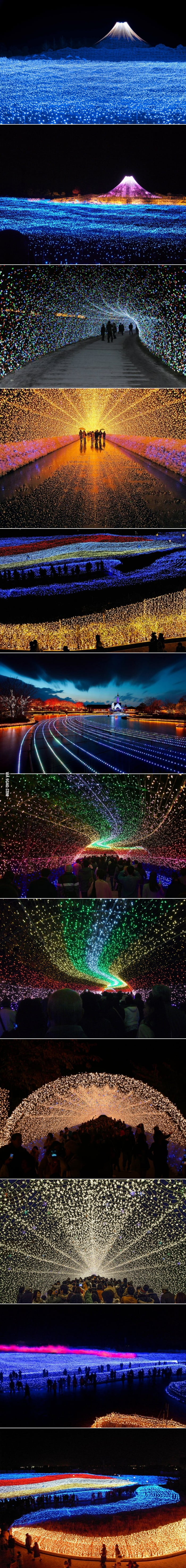 Japan's Winter Lights Festival
