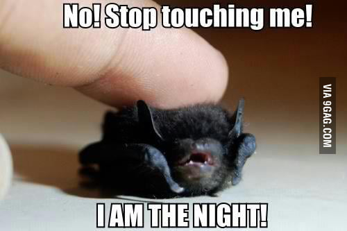 I AM THE NIGHT!!!