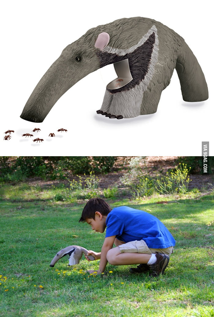 Anteater Bug Vacuum Cleaner