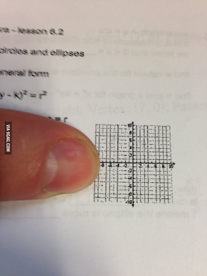 What is this a graph for ants?