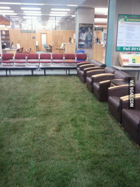 Campus library has installed grass. Real grass.