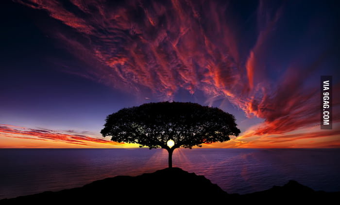 An awesome sunset photo.