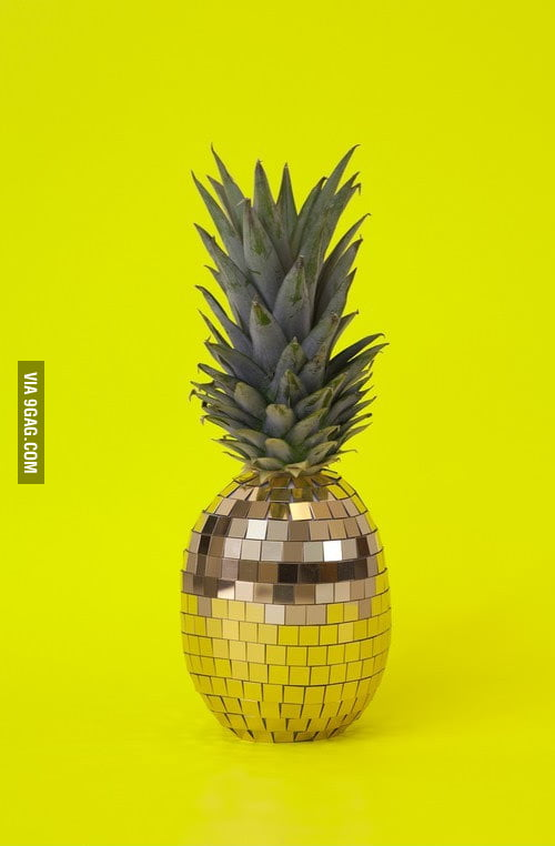Disco pinea