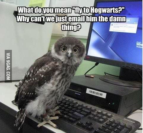 Fly to hogwartz!?