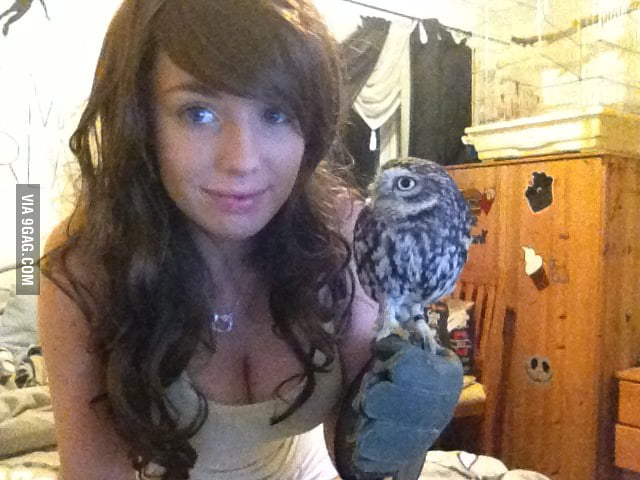 A chick and an owl.