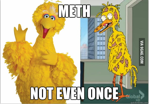 Big Bird knows