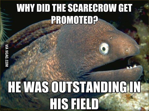 Why did the scarecrow get promoted?
