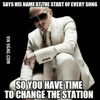Good guy Pitbull :)